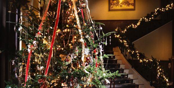 ★☆12月は特別☆★\スタッフおすすめ!/期間限定クリスマスプラン♪271万⇒203万